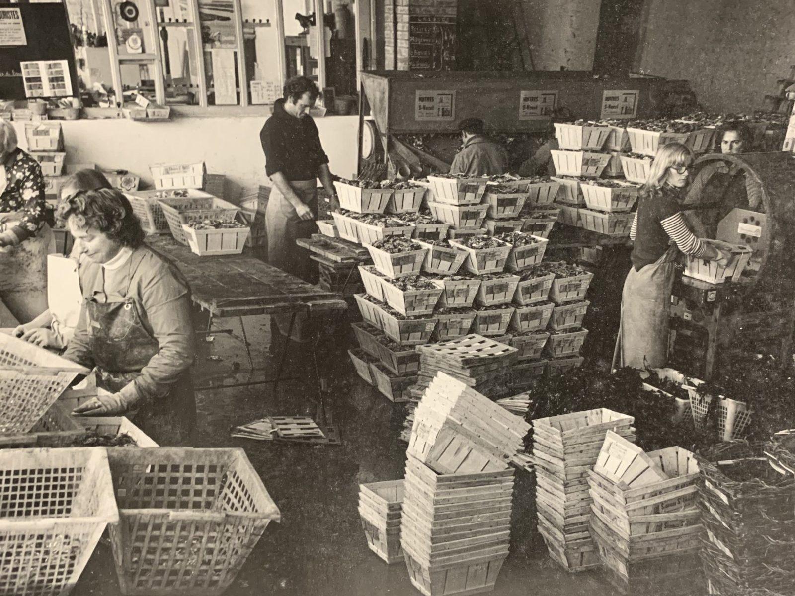 Savoir-faire années 60 Huîtres Hélie